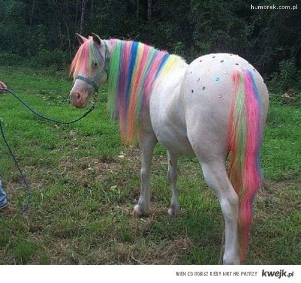 plastic horse