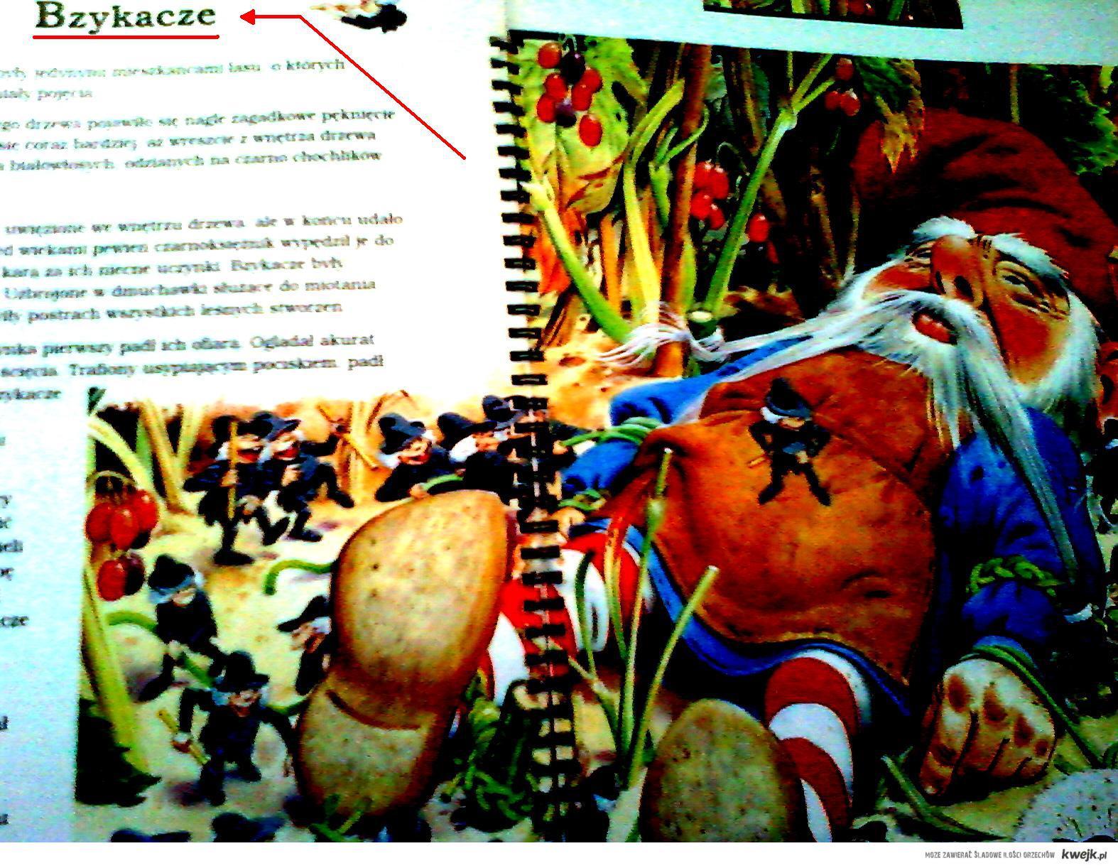 Książeczka dla dziecka, taa.. XXI w :D
