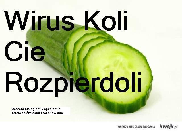 escherichia coli to bakteria, a nie wirus...