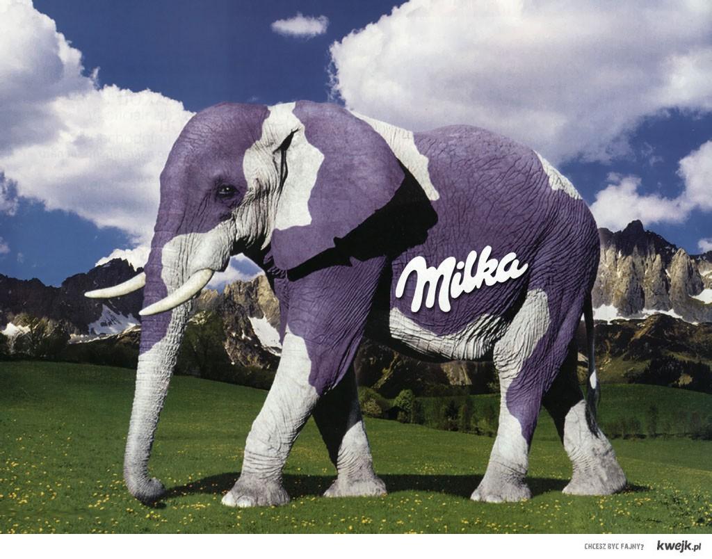 Milka ma nowe zwierze...