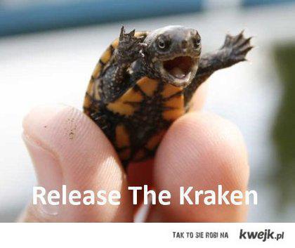 releasecraken