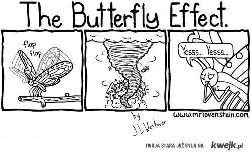 butterflyeecfect