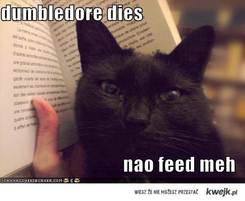 dumbledoredies