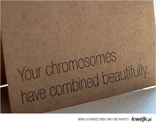 yourchromo