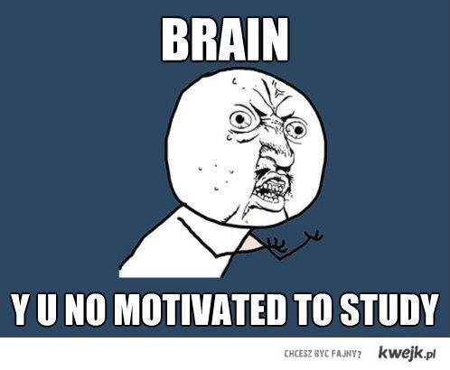 brainbrain