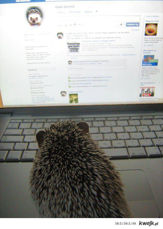 Hubal Jeżyński updejtuje swój profil na facebooku :-)