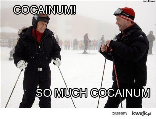 Cocainum