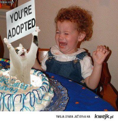 dramatic birthday