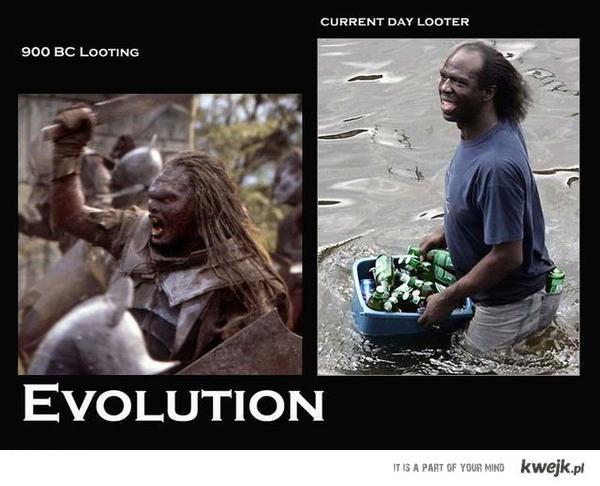 po prostu ewolucja