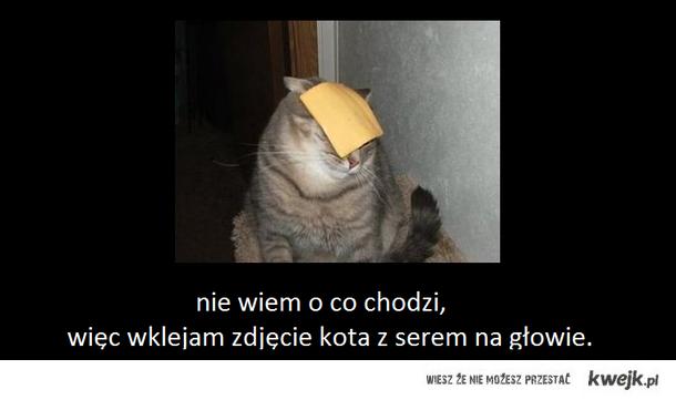 kot_z_serem