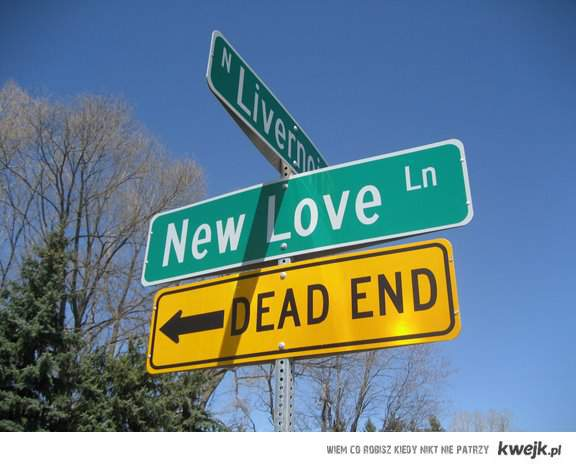 new love - dead end