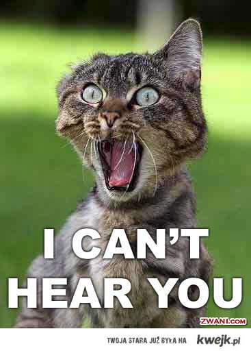 Nie słyszę Cię!!