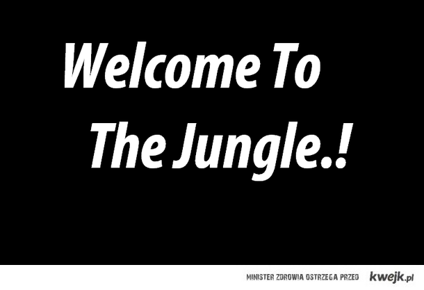 Welcome To The Jungle.