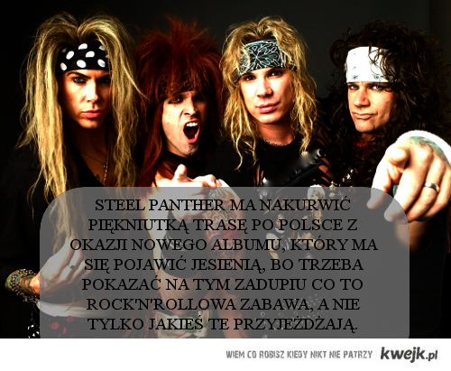 Steel Panther do Polski