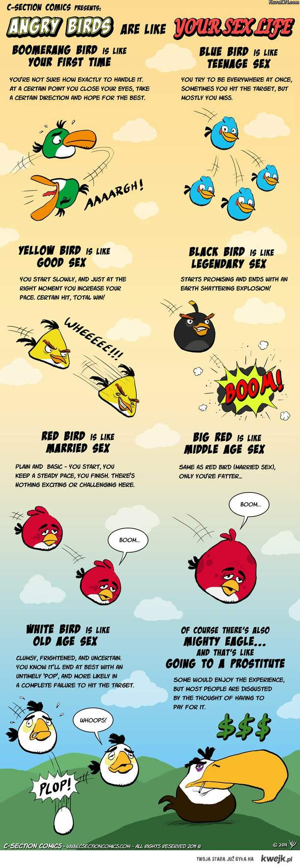 angry birds sex