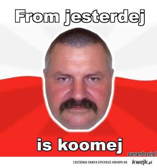 from jesterdej