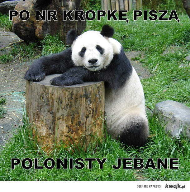 polonisty