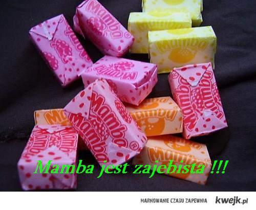 mamba