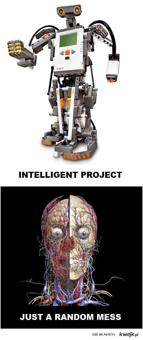Intelligent project vs. Just a random mess