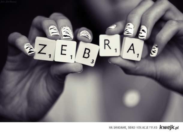 ZEBRA !