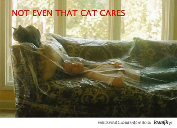 Nawet kot ma Cie gdzieś