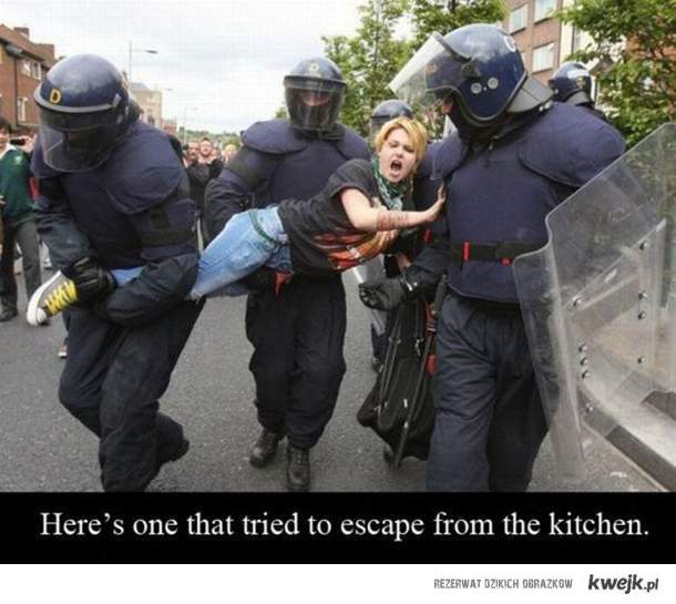Tu jest jedna, która próbowała uciec z kuchni.