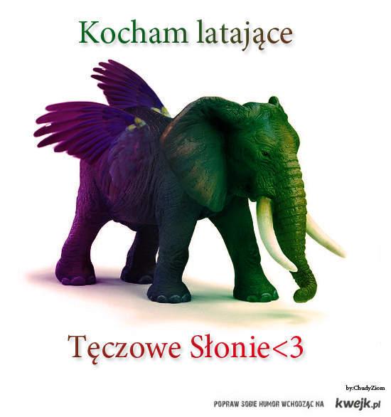 Słonie<3