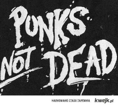 Punks not dead DZIWKO