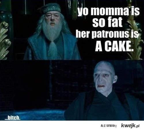 voldek-dumbledore