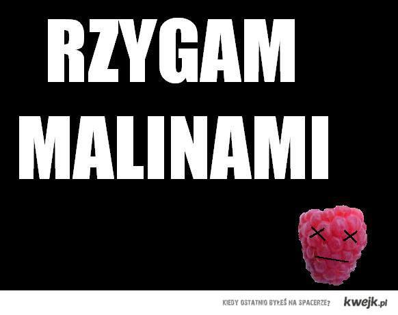 RZYGAM MALINAMI