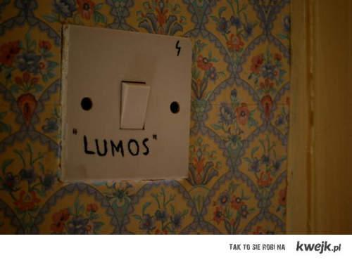 lumos 8D
