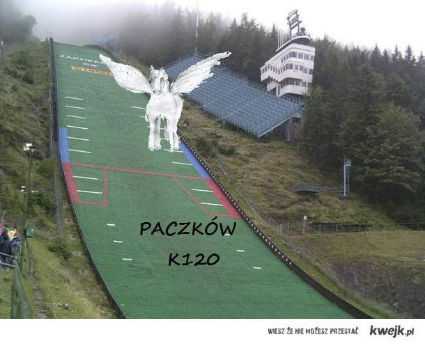 Zawsze chciałem zostać trenerem Polskiej Reprezentacji Pegazów-Skoczków Narciarskich! Moje marzenie ma szanse się spełnić jeżeli