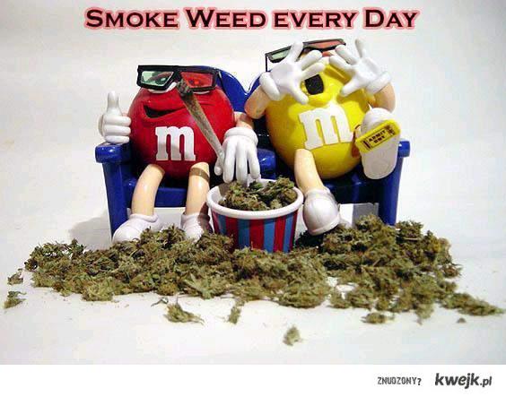 smoke weed everyday!