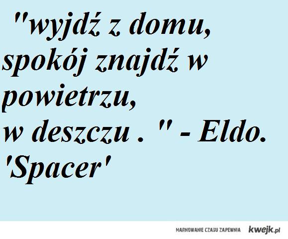Eldo,Spacer