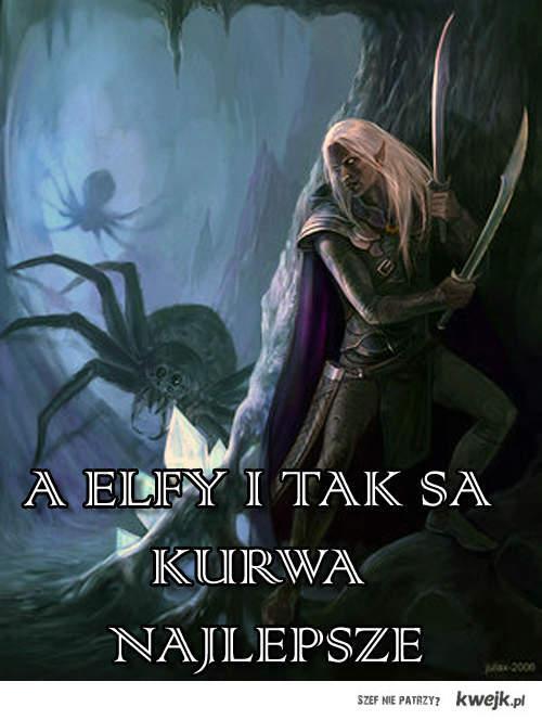 A elfy i tak sa kurwa najlepsze