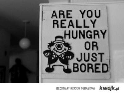 hungry or bored?