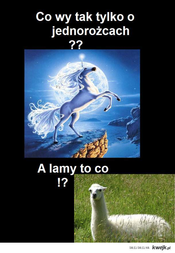 a lamy ??