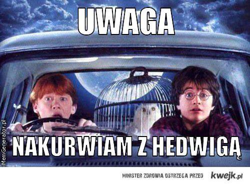 Nakurwiam z Hedwigą