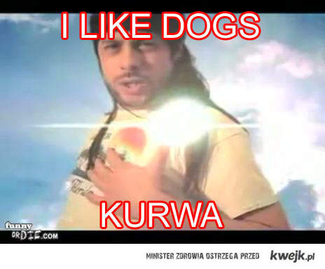 l like Dogs