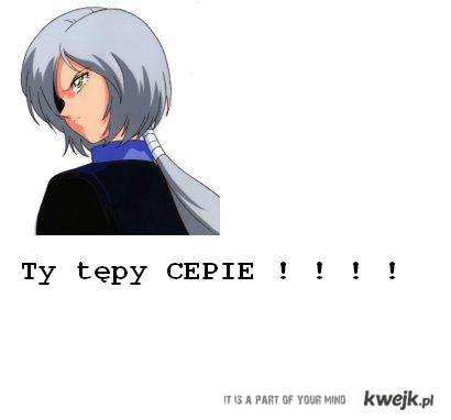 CEP !
