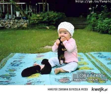 Dziecko zajada szczeniaczki