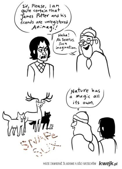 Severus imagination