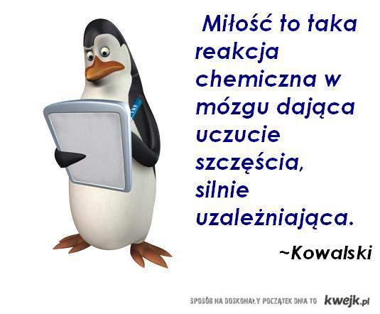 Kovalsky!