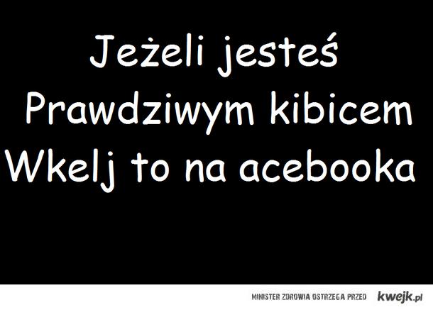 Kibic