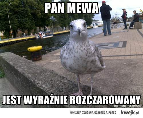 PanMewa