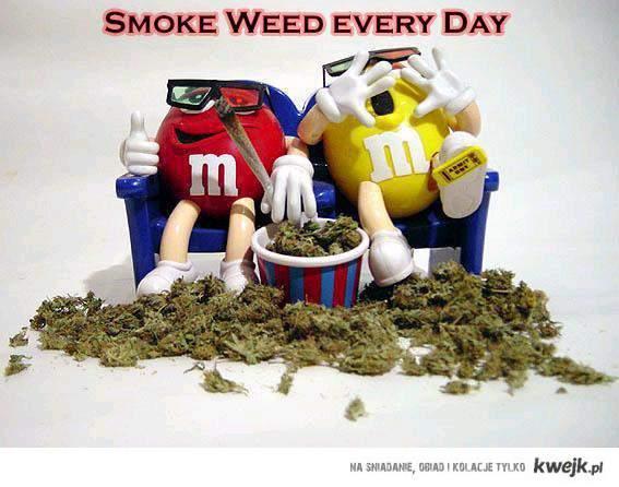 Smoke weed everyday ! ~.~