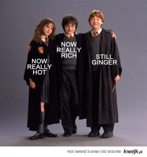hot,rich,ginger