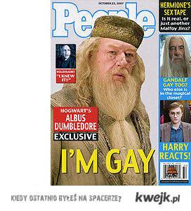 dumbledor-gay?
