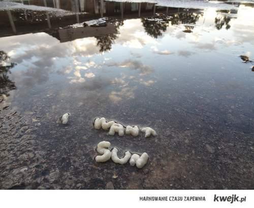 WANT SUN!
