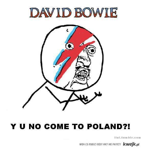 David Bowie Y U no come to POLAND?